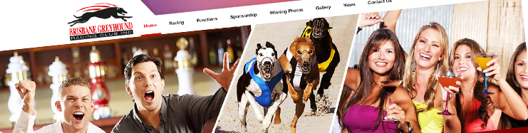 Brisbane Greyhound Racing Club web design Brisbane.